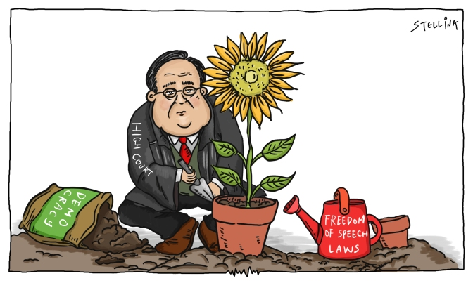 Sunflowers Bask in Judicial Blessing